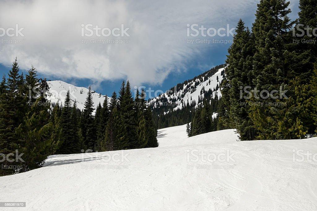 Alpine Sports stock photo