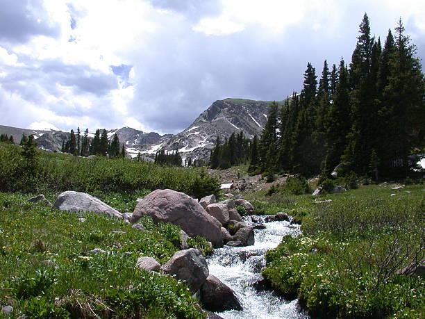 Alpine fluxo - foto de acervo