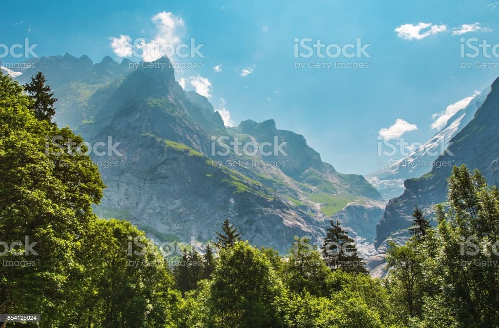 Alpine Summer Scenery stock photo