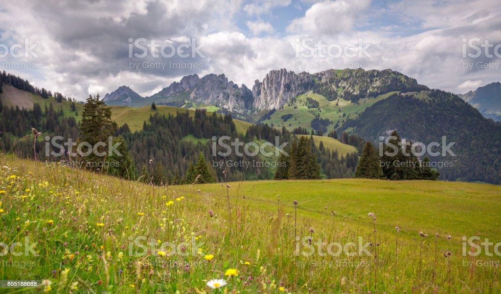 Alpine Summit  Ridge. The Tooth Of Ruth. stock photo