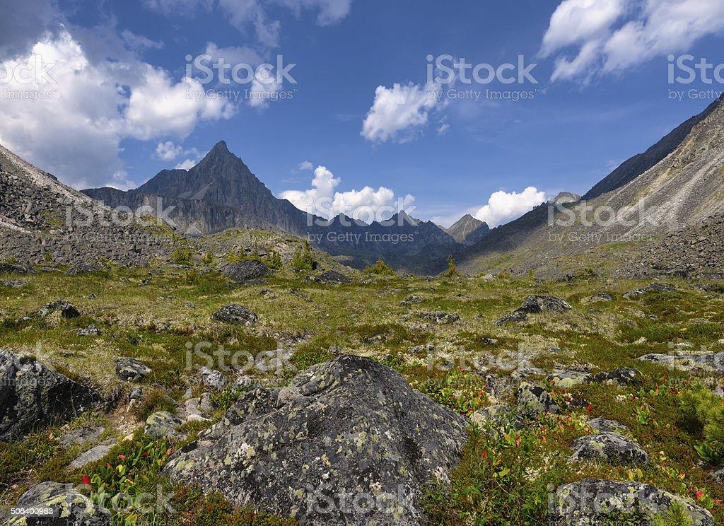 Alpine tundra. Eastern Sayan stock photo