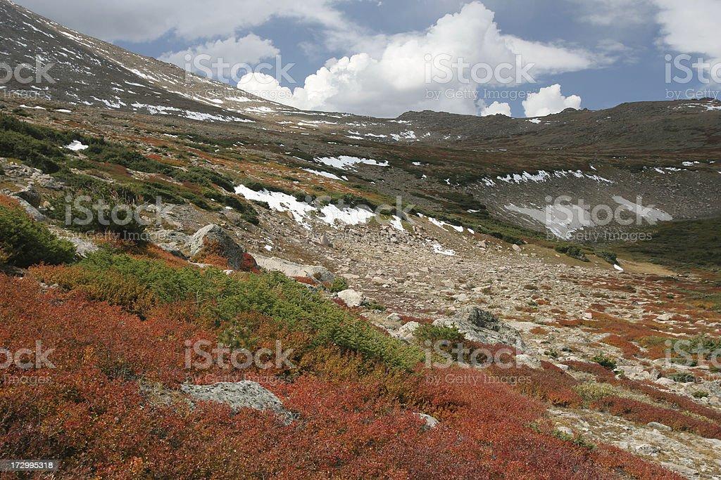 alpine tundra in autumn stock photo
