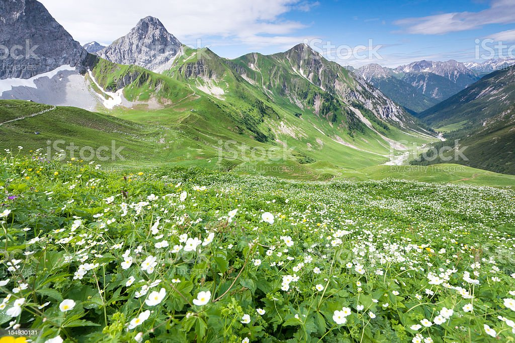 alpine view from the anhalter hut tirol, austria, alps royalty-free stock photo
