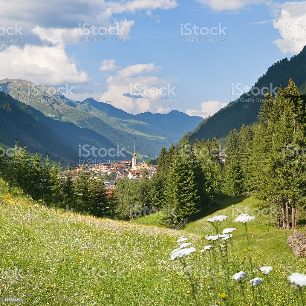 Alpine village and flower field royalty-free stock photo
