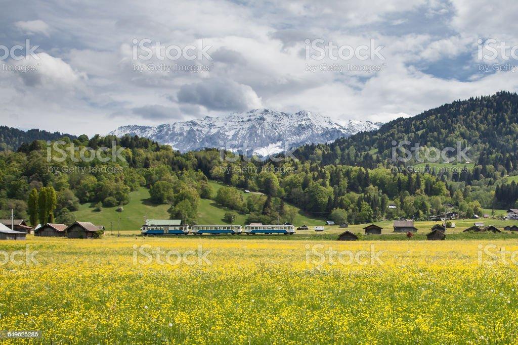 Alpen-Garmisch-Frühling mit dem Zug ein gelbes Feld – Foto