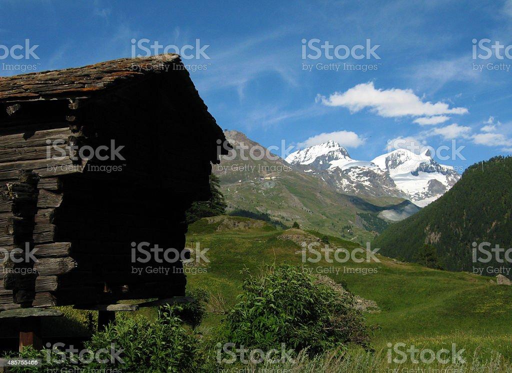 Alps Meadows stock photo