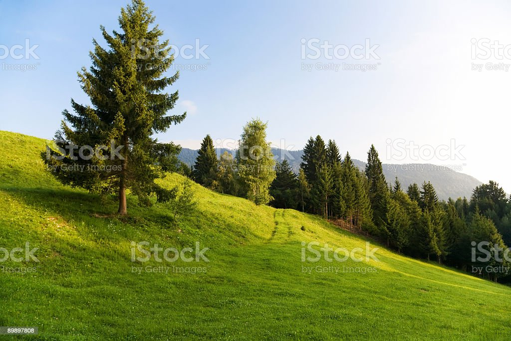 Alps morning landscape royalty-free stock photo