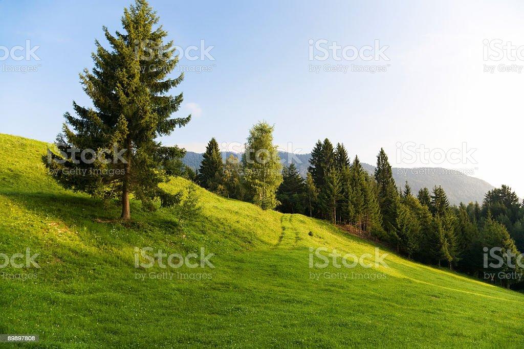 Paisaje de los Alpes, por la mañana foto de stock libre de derechos