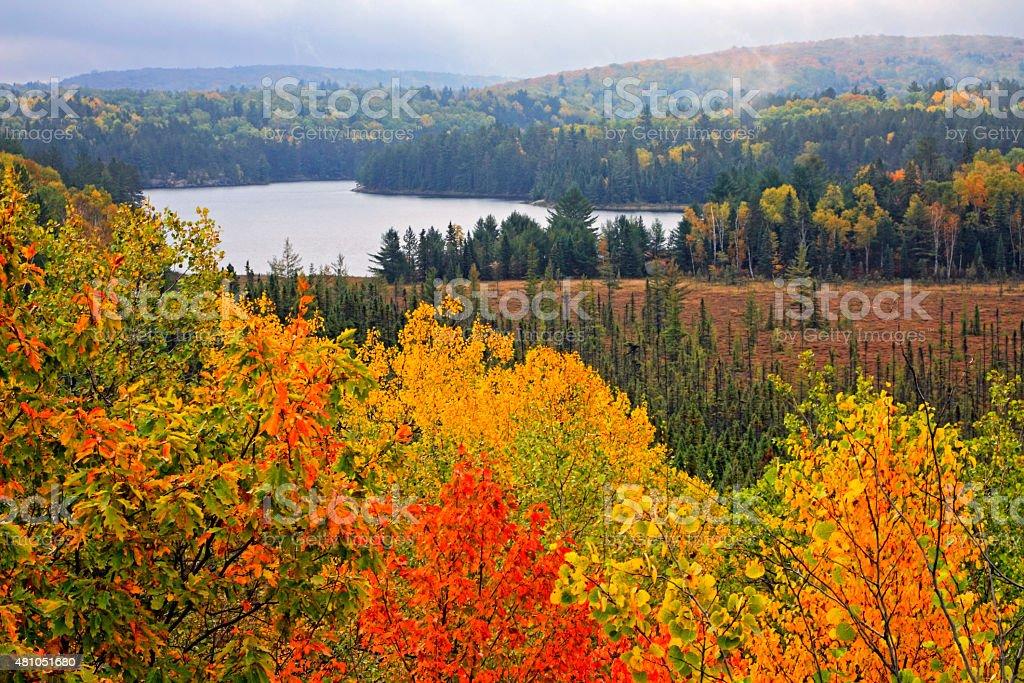 Alqonguin Park Fall Color Lookout stock photo