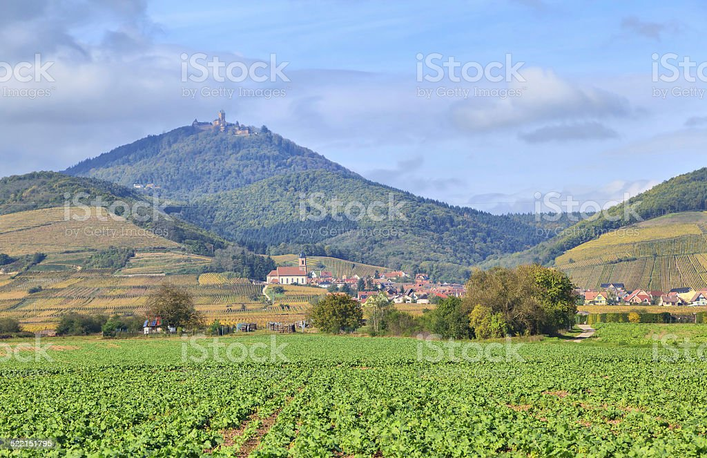 Alsace landscape near village Orschwiller stock photo