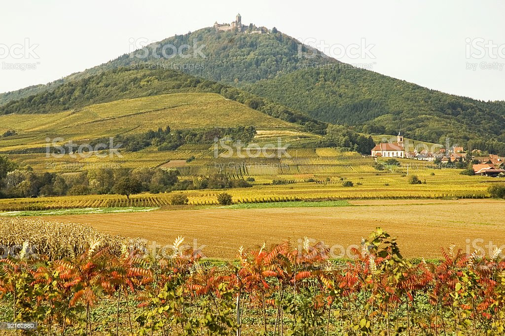 Alsace landscape stock photo