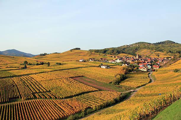 Alsaziana villaggio nel vigneto - foto stock