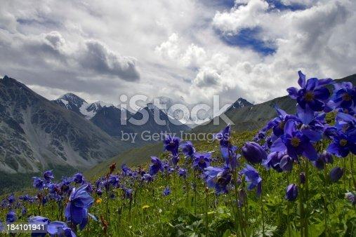 istock Altai motives 184101941