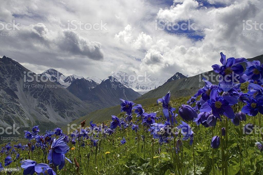 Altai motives stock photo