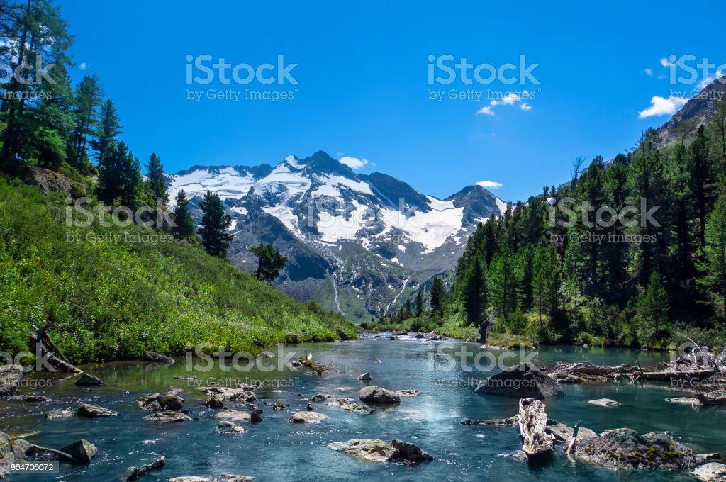 Altai Mountains, Lake Teletskoye, Southern Siberia, Russia royalty-free stock photo