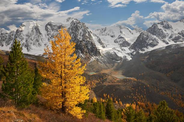 Cтоковое фото Altai mountains, Russia, Siberia.