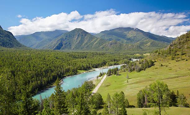 altai river katun - państwowy rezerwat przyrody altay zdjęcia i obrazy z banku zdjęć