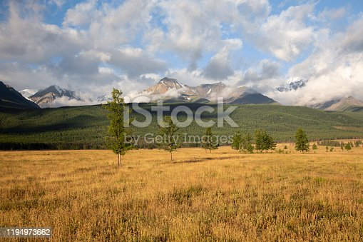 istock altai snow mountain and steppe forest 1194973662