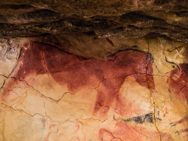 altamira yineleme - mağara resmi stok fotoğraflar ve resimler