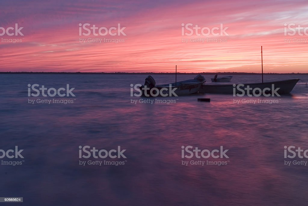 Altata in Pink stock photo