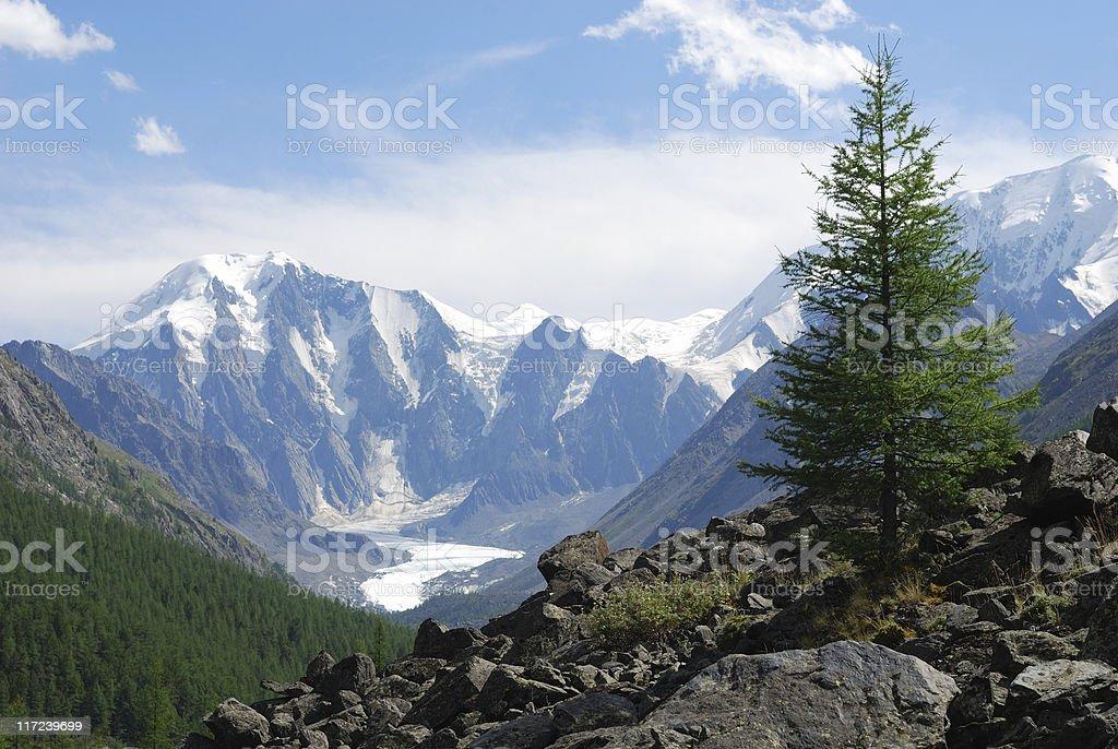 Altay stock photo