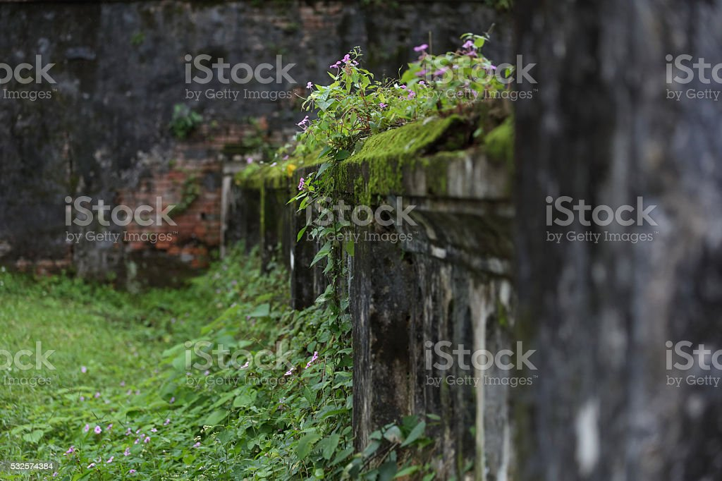 Alte Mauer stock photo