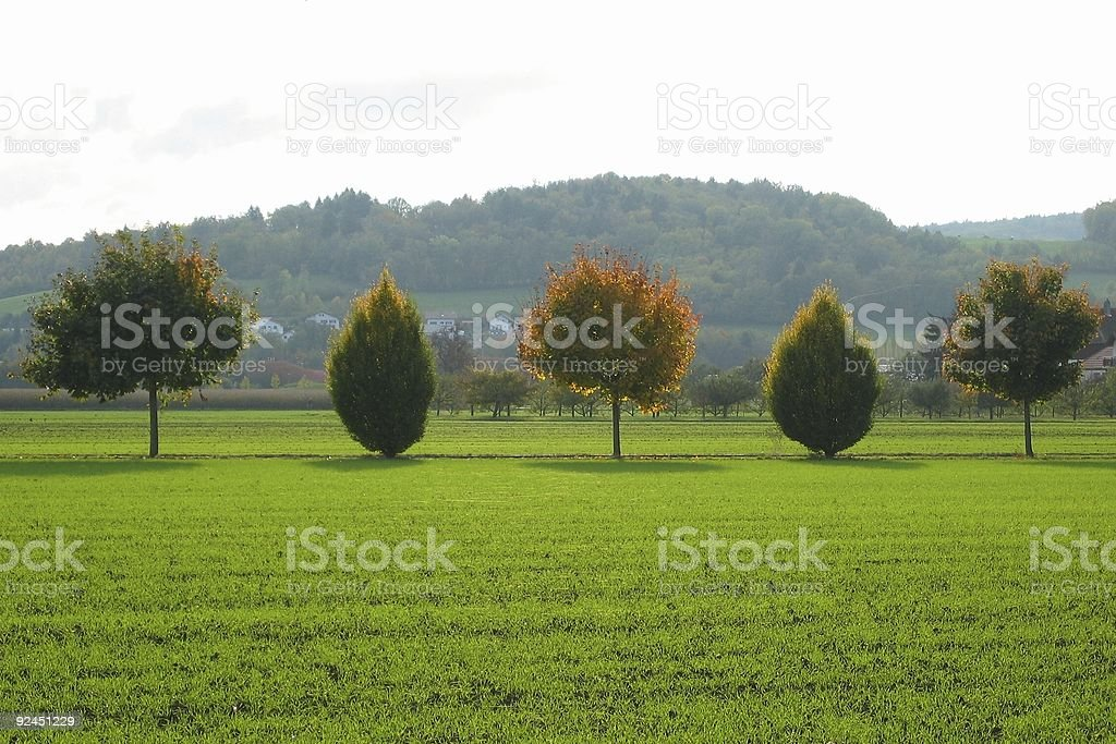alternate shapes stock photo