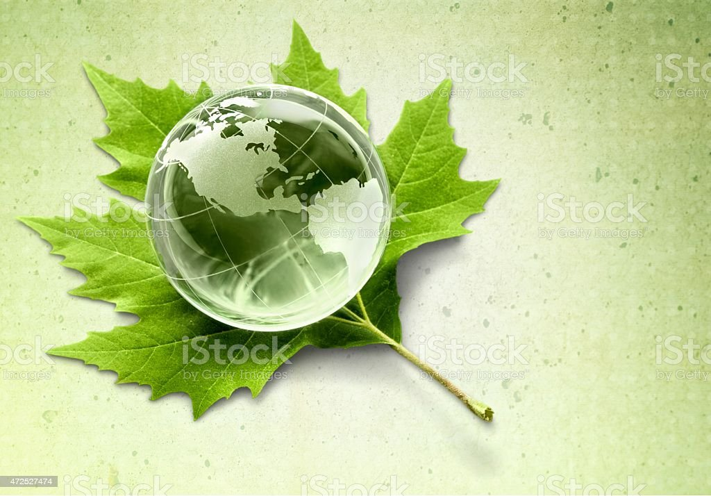 Alternative Energy. Globe on Leaf stock photo