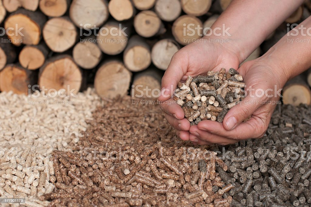 Alternative energy with wood chips stock photo