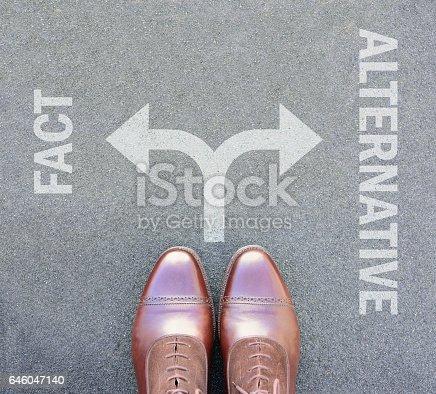 istock Alternative fact, fake news. Choise. Arrows. 646047140