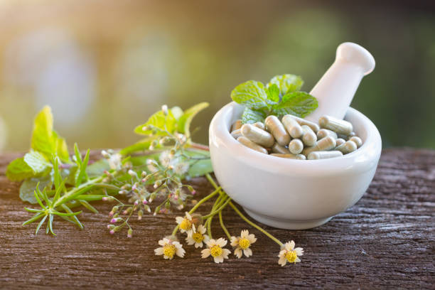 Alternative health care fresh herbal plant and herbal capsule stock photo