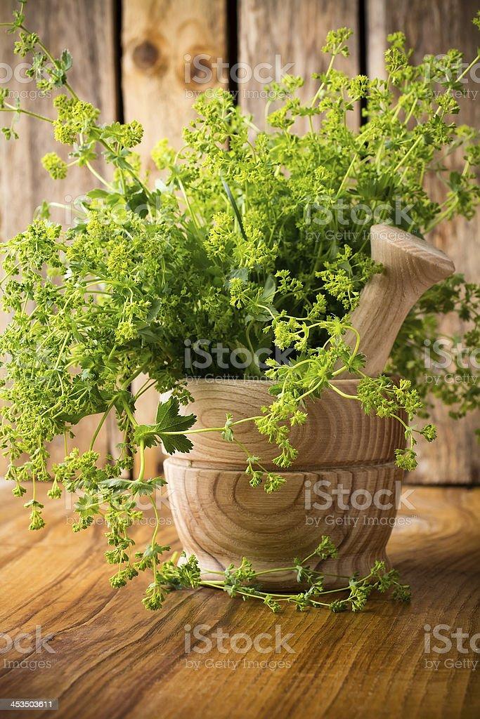Alternative herbal medicine. royalty-free stock photo