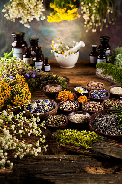 Alternative medicine, dried herbs and mortar on wooden desk back – Foto