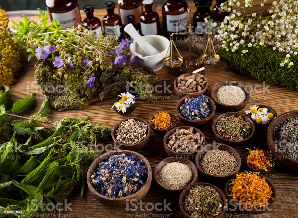 Alternative medicine, dried herbs and mortar on wooden desk back - Photo