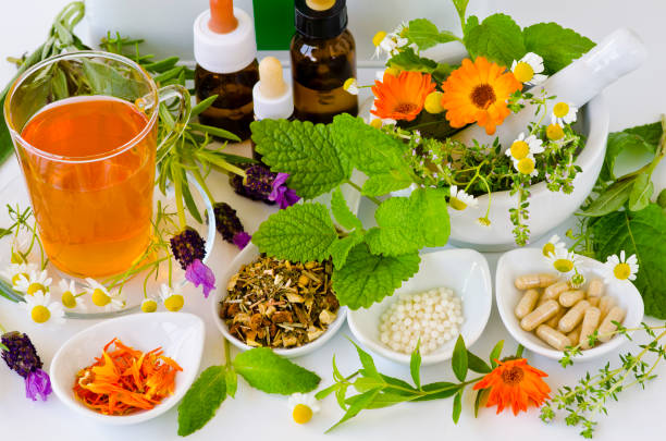 Alternative Medicine. Herbal Therapy. Alternative Medicine. Herbal Therapy. Rosemary, mint, chamomile, thyme, melissa, lavender and calendula. herbal medicine stock pictures, royalty-free photos & images