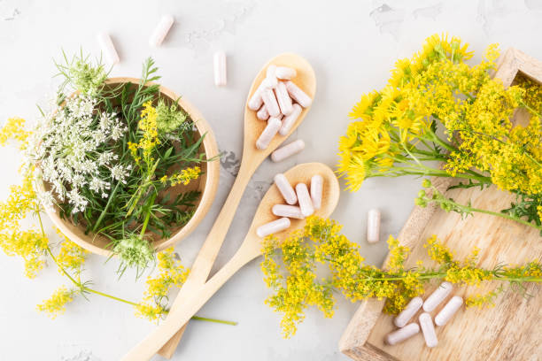 Alternative medicine, naturopathy, homeopathy and dietary supplement. Herbal remedy in capsules and camomile plant over grey background stock photo