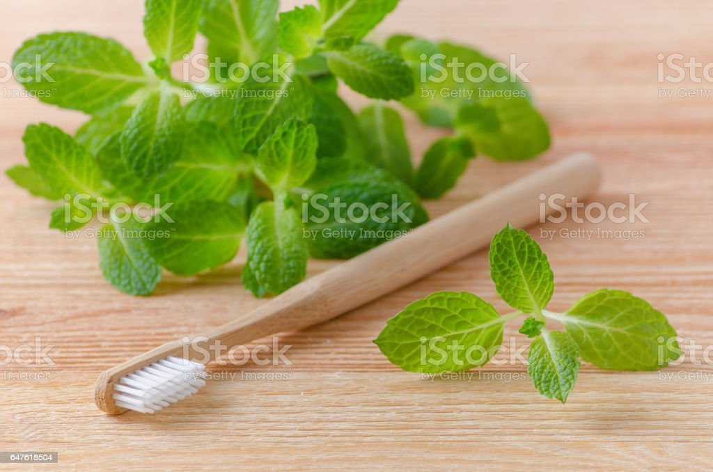 alternative natural wood toothbrush and mint on wooden background stock photo
