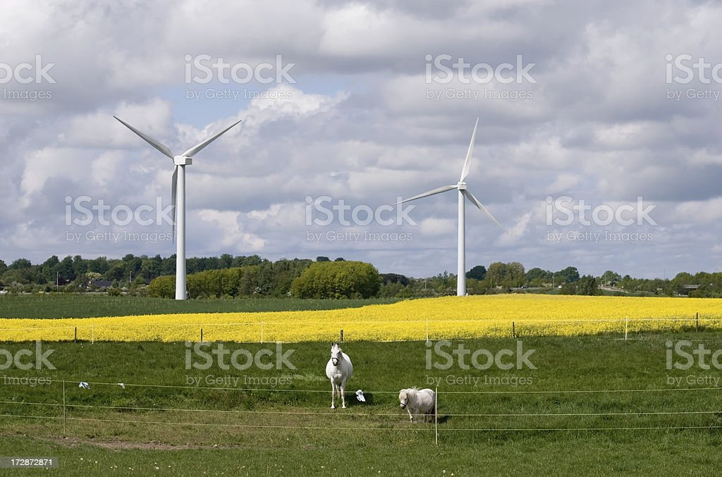 Alternative power royalty-free stock photo