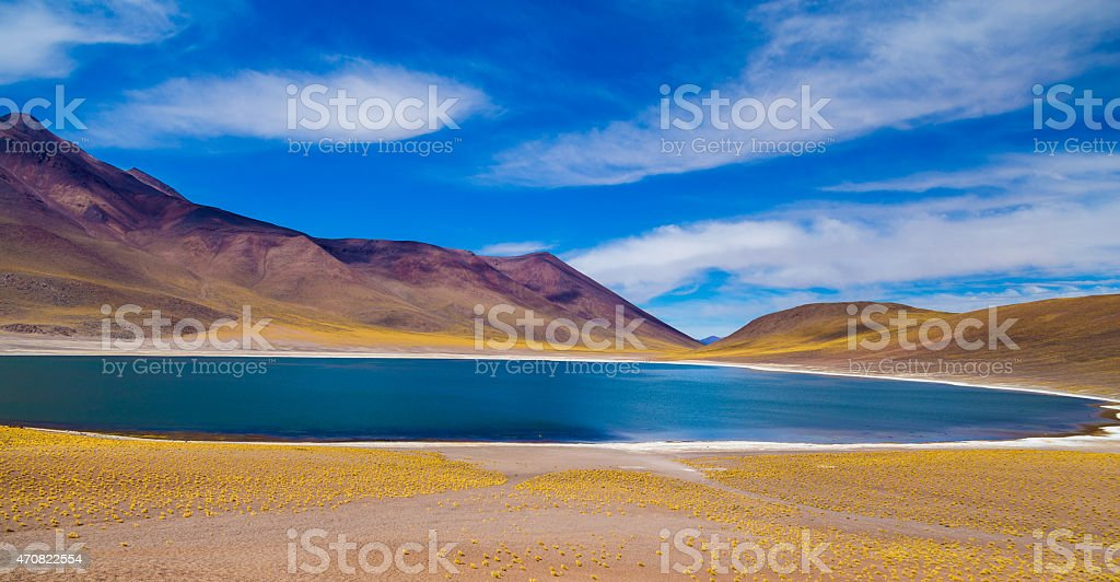 Altiplanicas Lagoon in Atacama, Chile stock photo