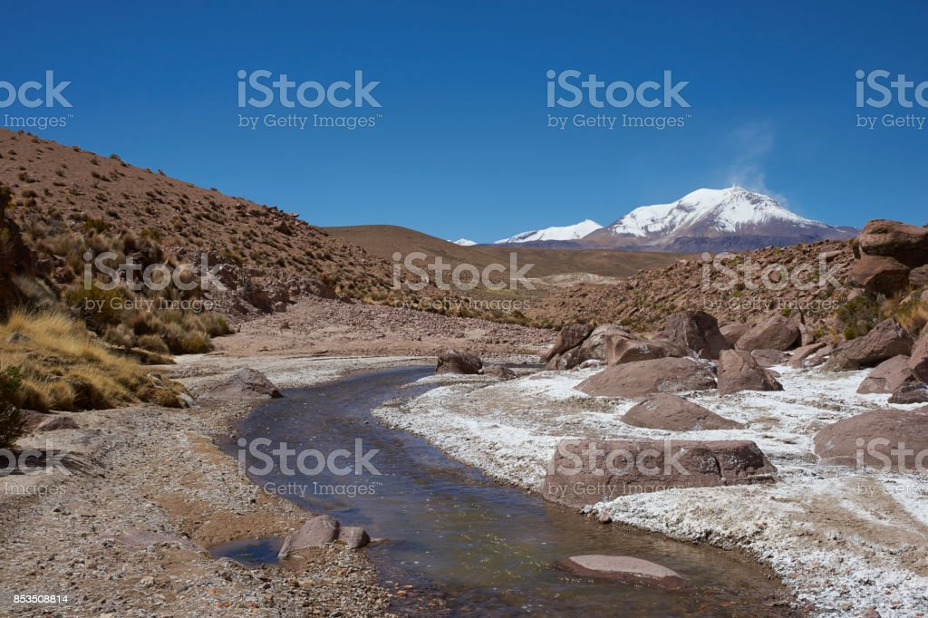 Altiplano in northern Chile stock photo
