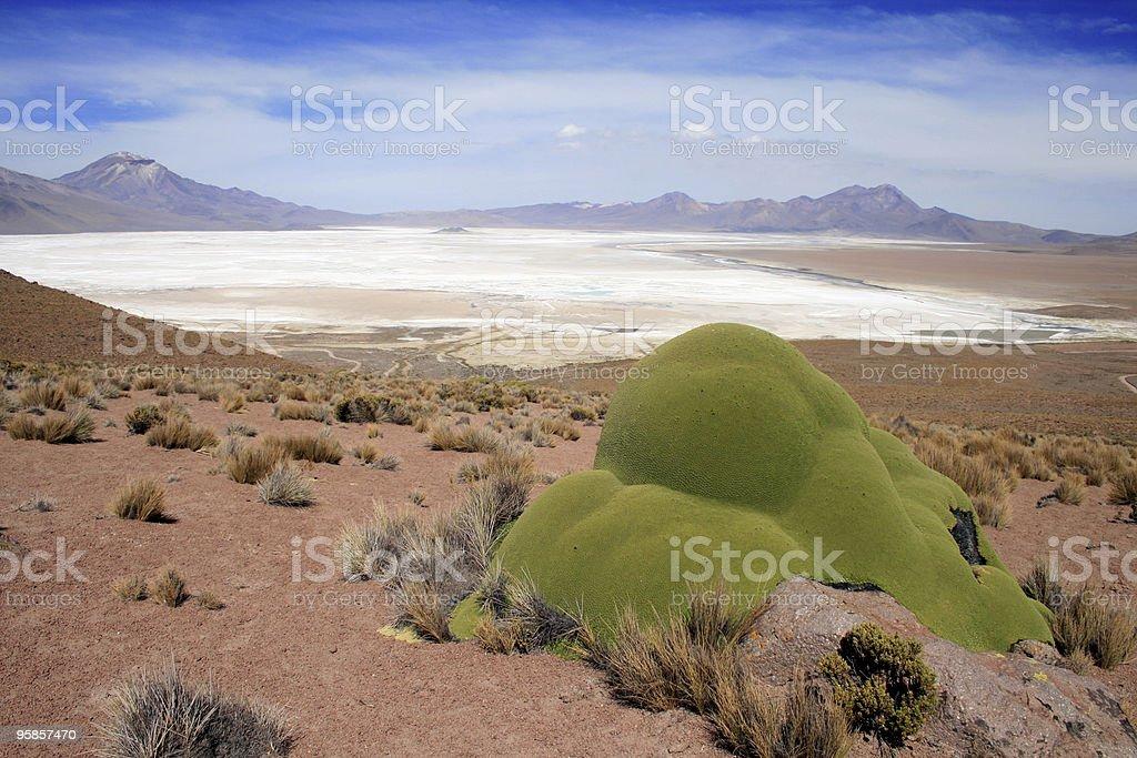 Altiplano Salt lake in Chile-Landschaft – Foto