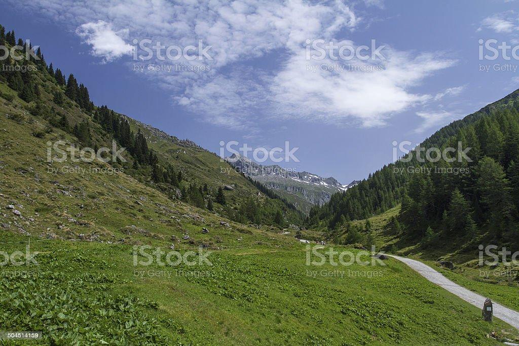 Alto Adige-country road - foto stock