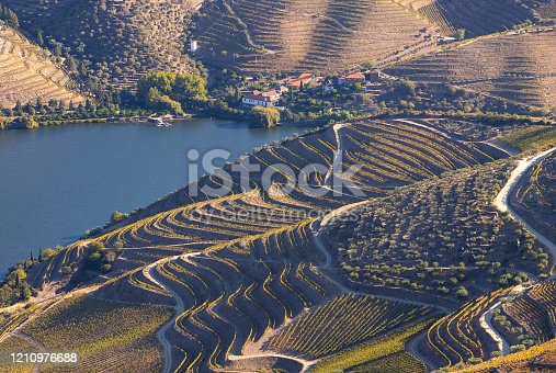 Alto Douro vinhateiro vineyards scenic landscape during harvesting season (vindima) - UNESCO World Heritage