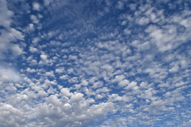 Altocumulus Clouds After a Storm Taken with Nikon D5600 in Del Rio Texas after a rainstorm. altocumulus stock pictures, royalty-free photos & images