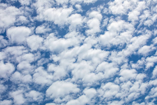 Altocumulus Clouds Altocumulus Clouds sdominick stock pictures, royalty-free photos & images