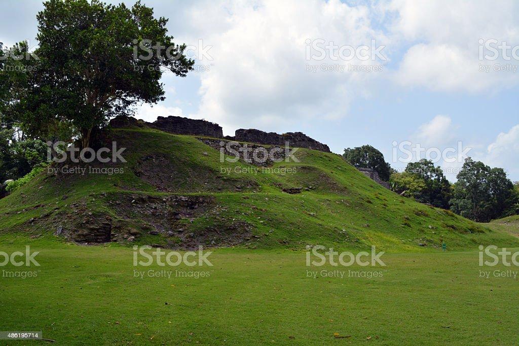 Altun Ha Mound stock photo