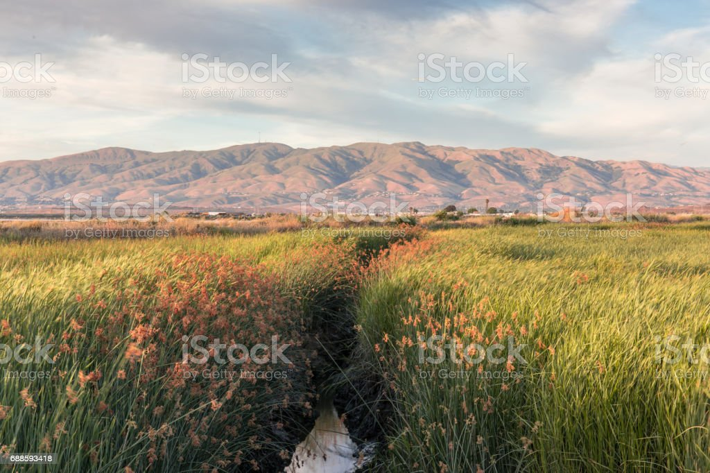 Alviso Wetlands and Diablo Mountain Range stock photo