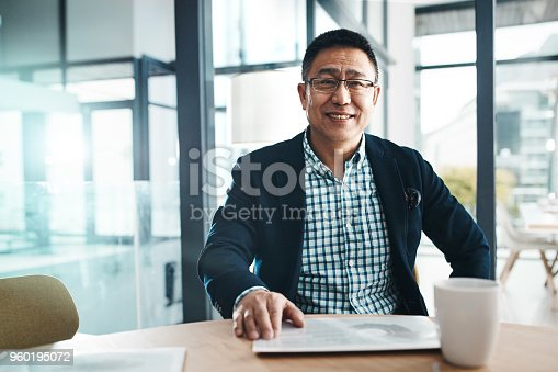 Portrait of a mature businessman working in an office