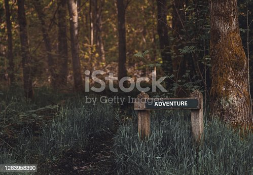 Always pick the path filled with adventure, hiking trail with