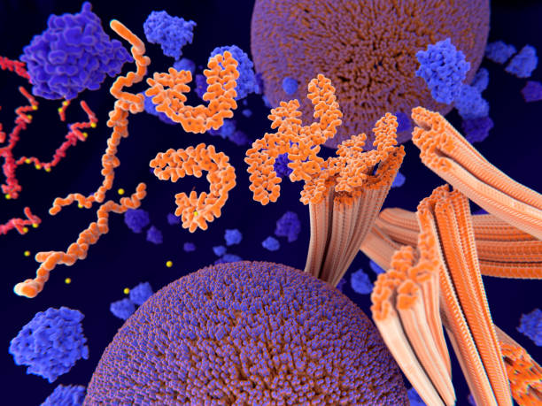 Alzheimer disease: Tau proteins aggregate to neurofibrillary tangles stock photo